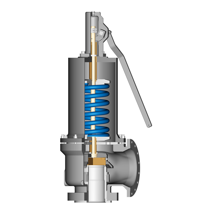 API Safety Relief Valves
